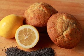 CURRANT SCONE - CALIFORNIA APRICOT SCONE